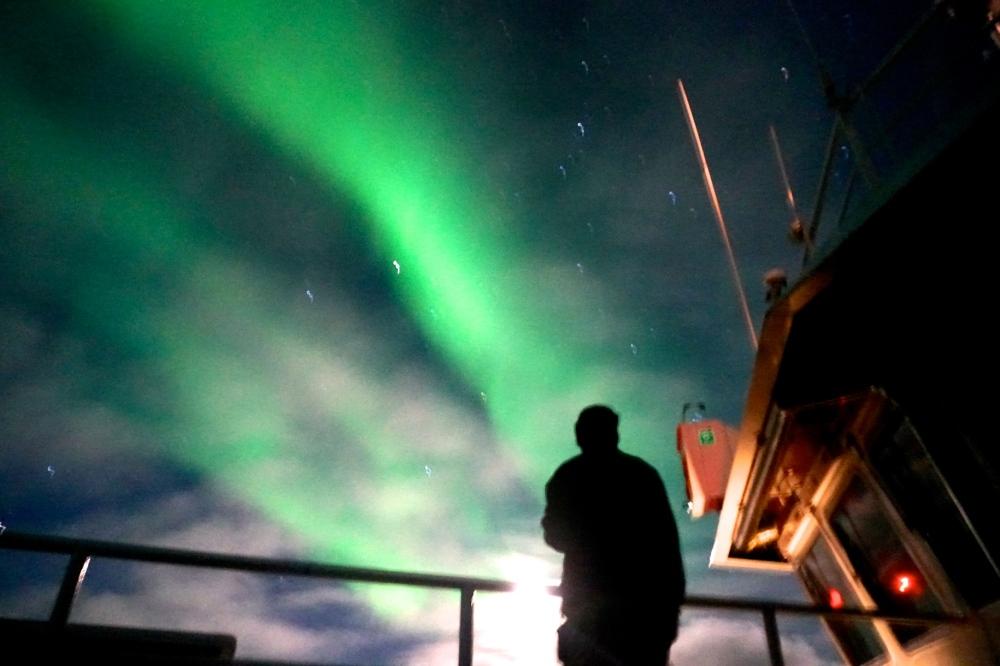aurora - Artie 2.jpg
