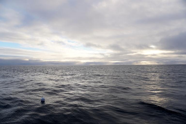 buoy 4.jpg