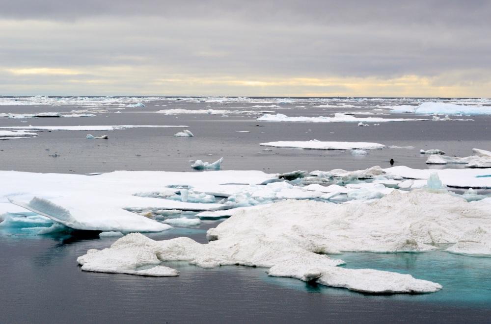 ice scene 1.jpg