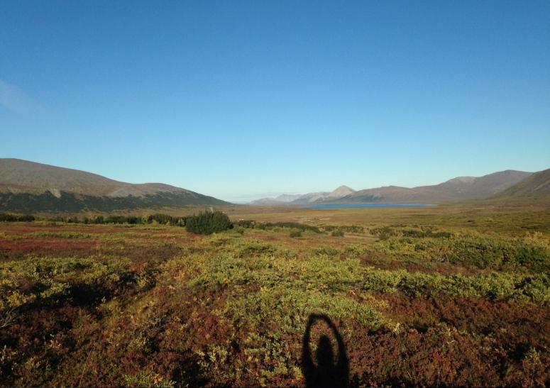 Jil Tundra.jpg