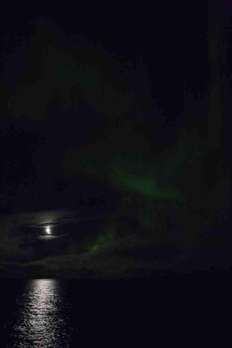 scott aurora.jpg