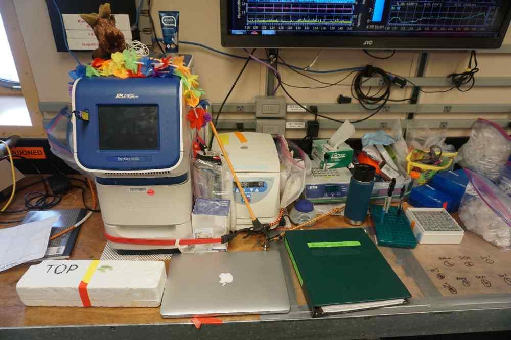 lab setup2.jpg
